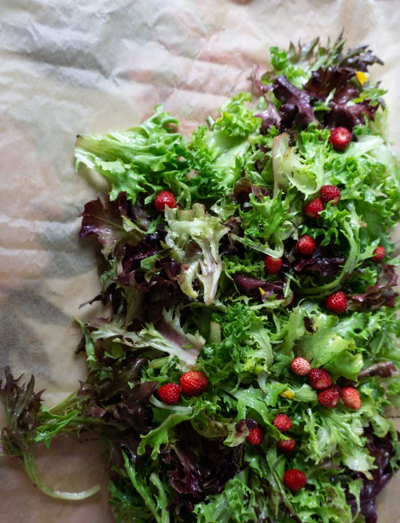 Salad with small, wild strawberries on a platter