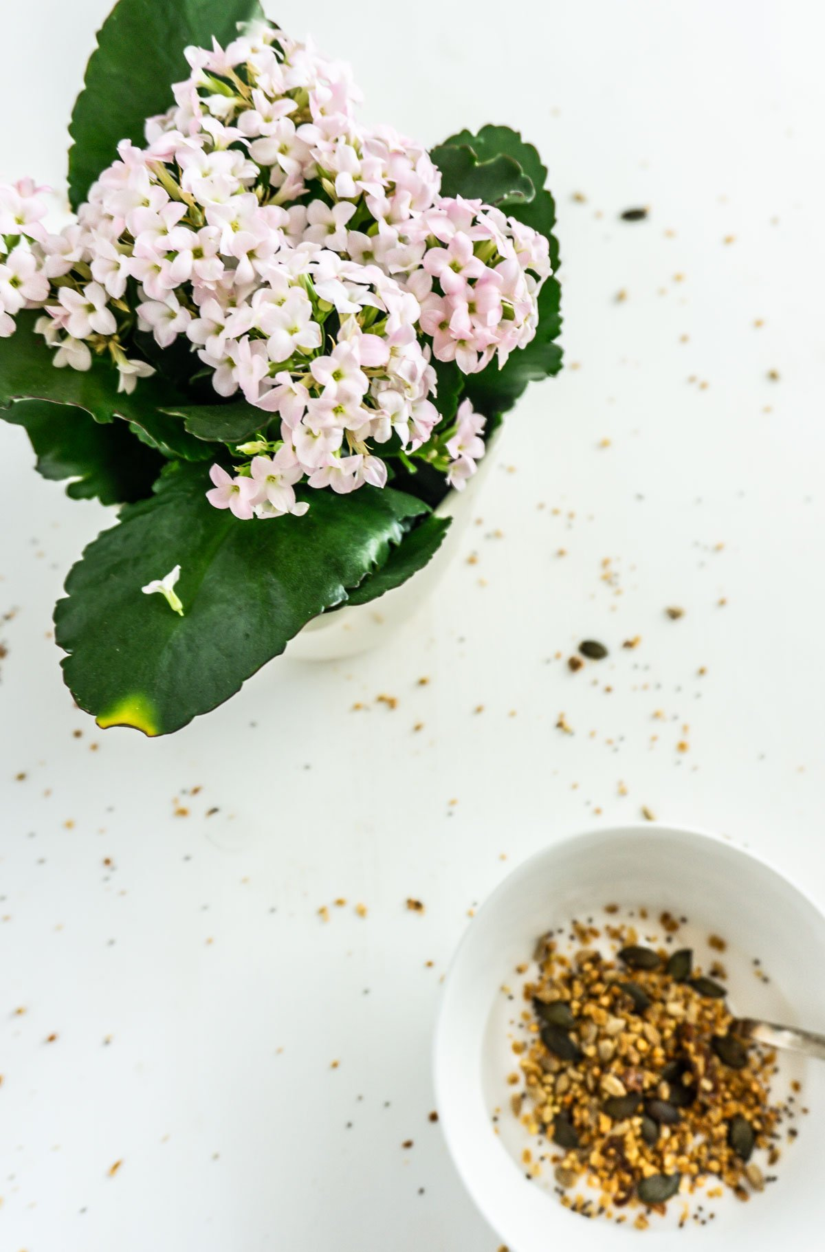 Bowl with nut-free ginger granola on yoghurt with flowers in the background