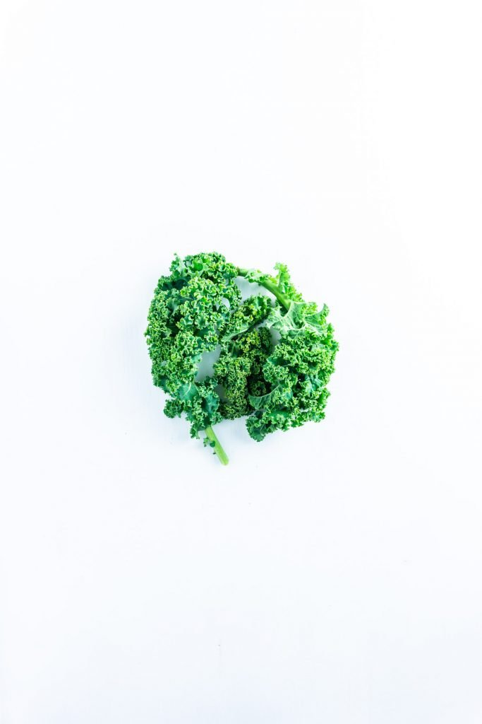 Kale on a white underground. Kale contains a lot of antioxidants helps to explain the science behind antioxidants.