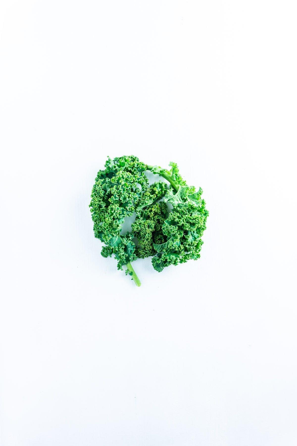 Kale on a white underground