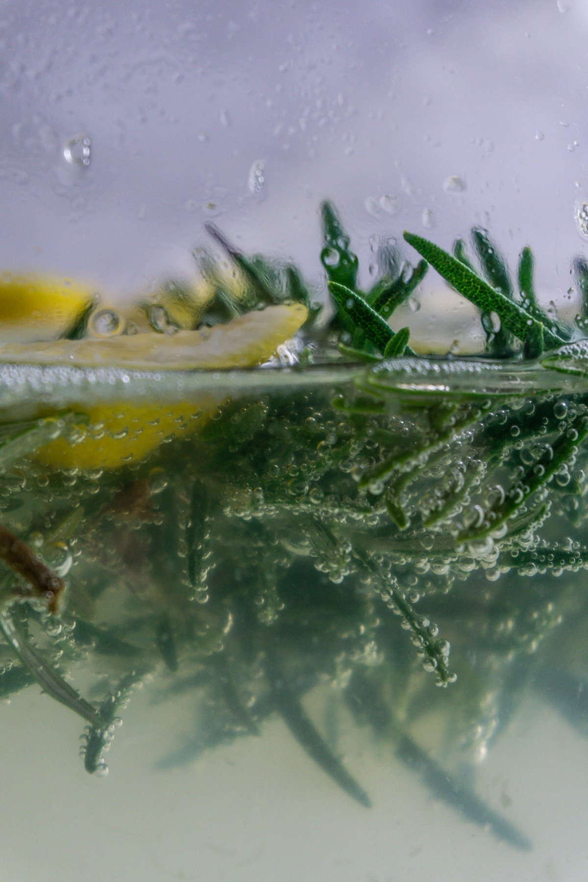 Rosemary and lemon seen half in water with gas bubbles