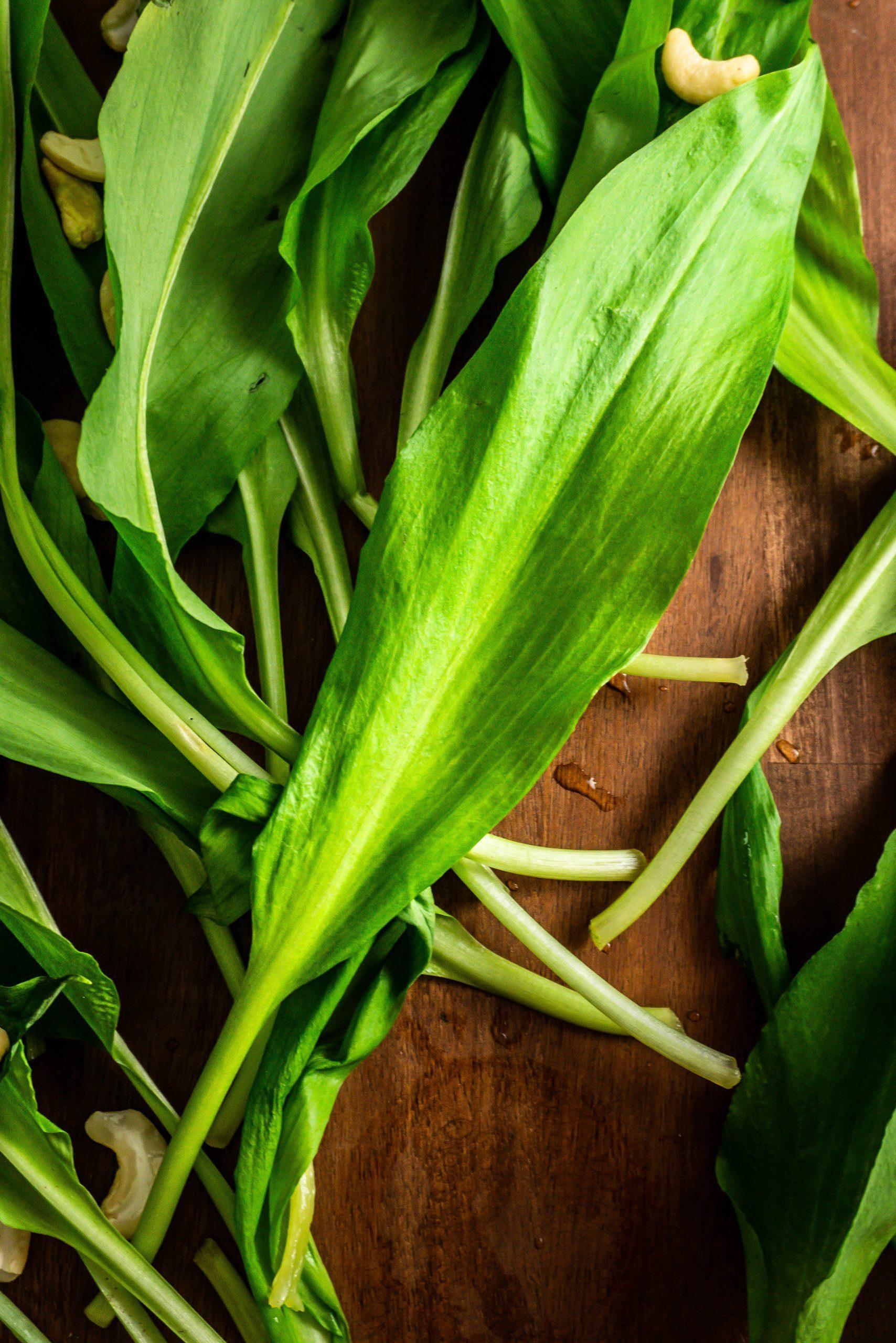 Wild Garlic leaves on a dark wooden background with a few cashews strewn around