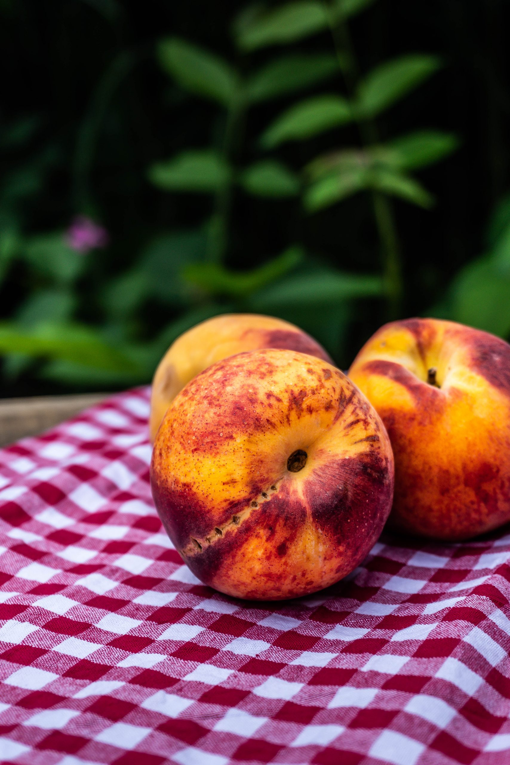 Peaches on a red tablecloth with green in the background