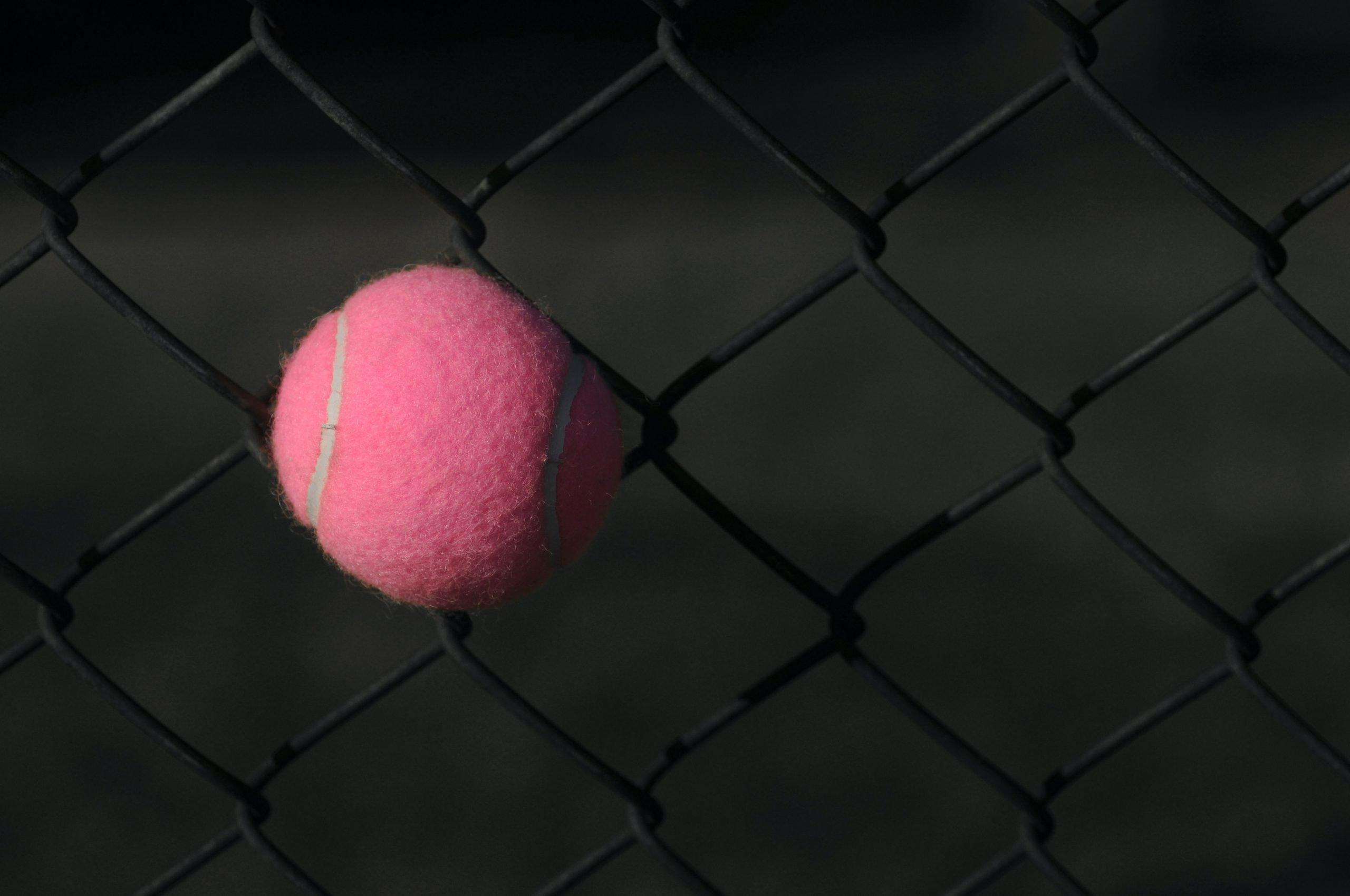 Pink tennisball in a net
